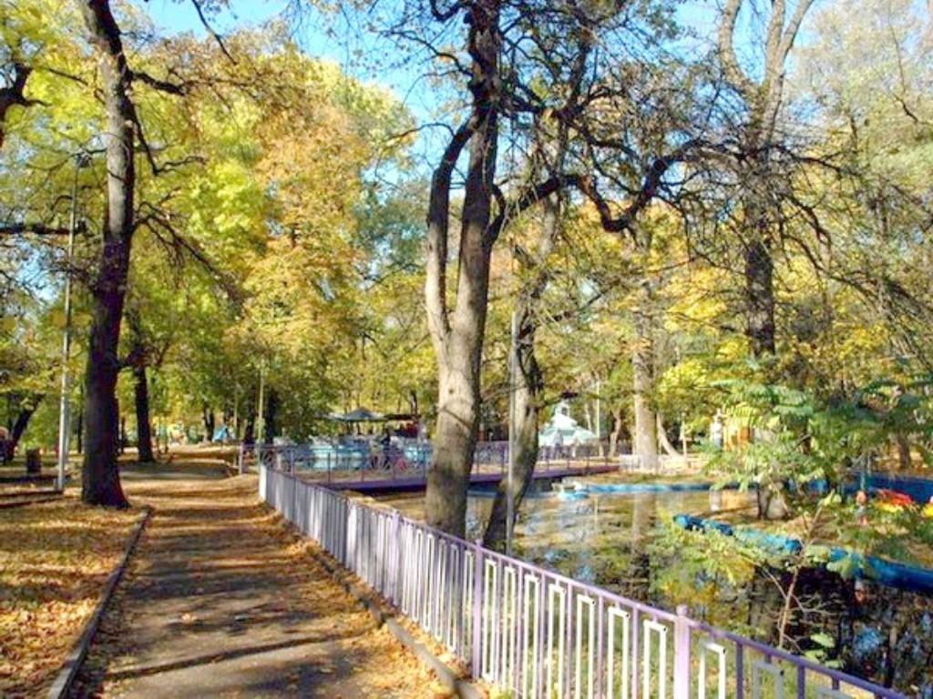 Центральный парк (Ставрополь)