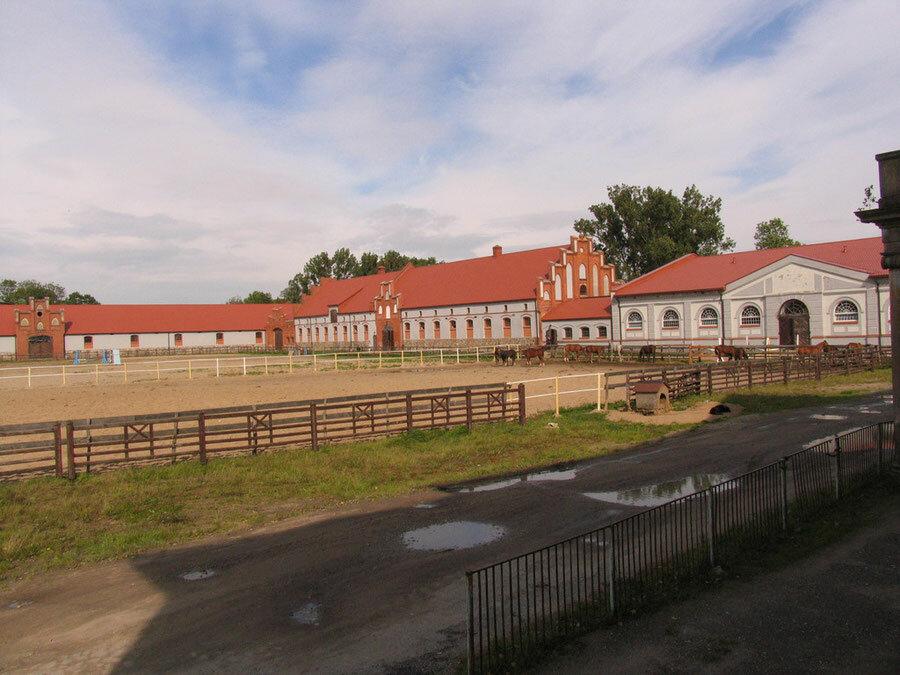 Конный завод «Веедерн» (Озёрск)
