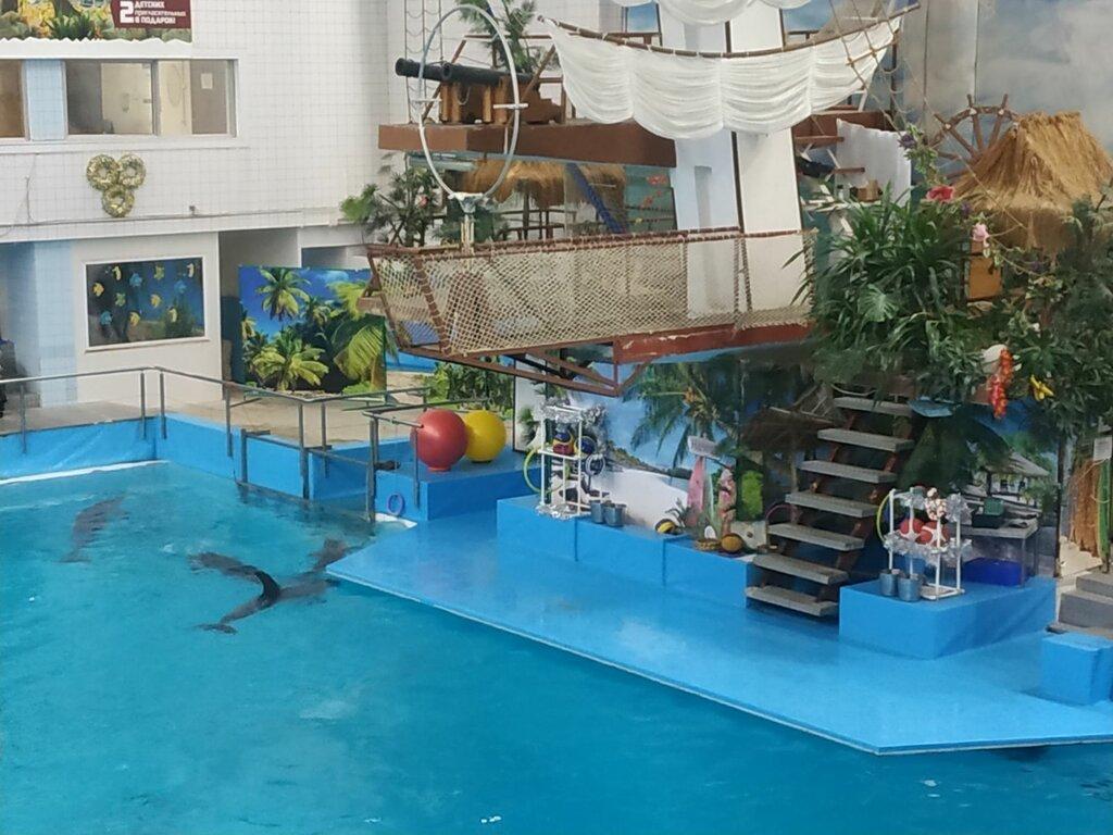 Набережночелнинский дельфинарий (Набережные Челны)
