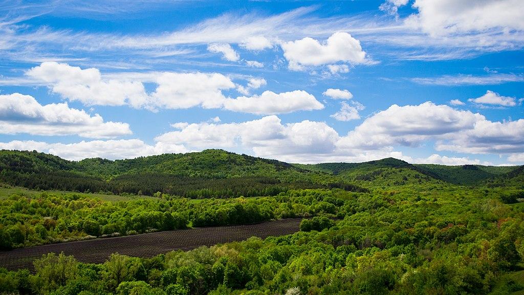 Национальный парк «Хвалынский» (Хвалынск)