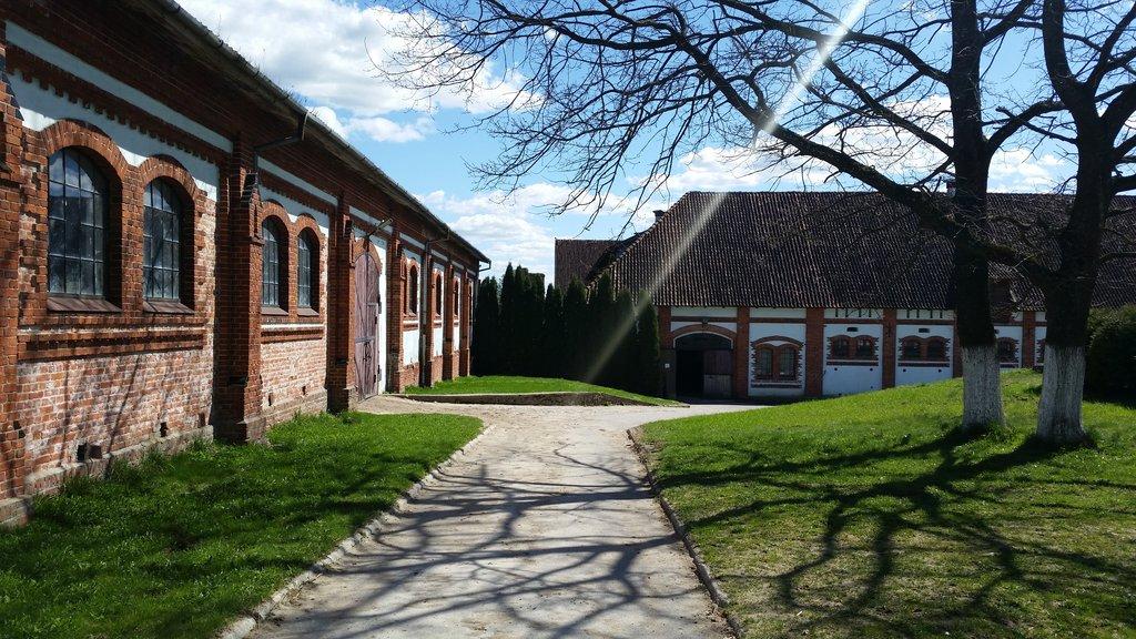 Замок Георгенбург (Черняховск)