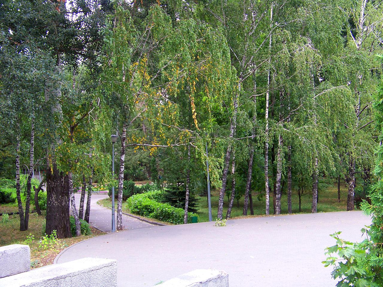 Нижний парк (Липецк)