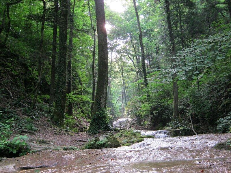 Водопады ручья Крученого (Абинск)