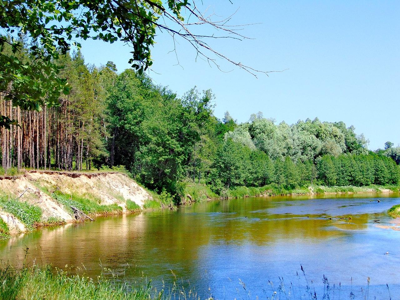 Национальный парк Марий Чодра (Марий Эл)