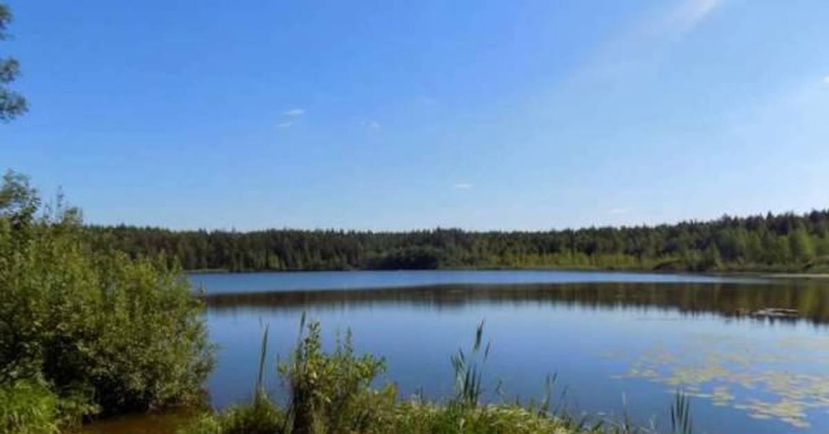 Озеро Коверши (Ногинск)
