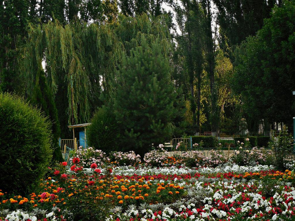 Городской парк культуры и отдыха (Балаково)
