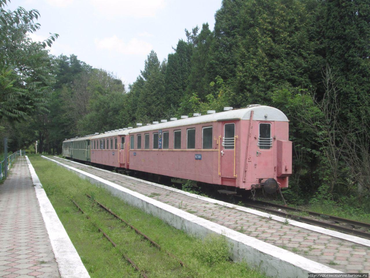 Владикавказская детская железная дорога (Владикавказ)