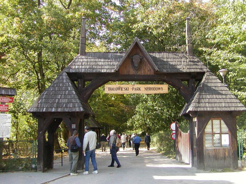 Национальный парк «Беловежская пуща» (Брестская область)