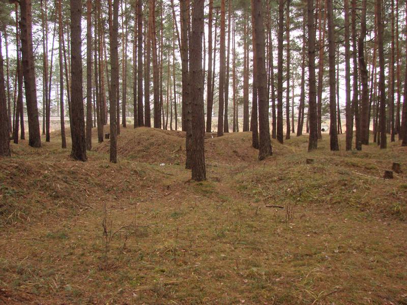 Гнёздовские курганы (Смоленская область)
