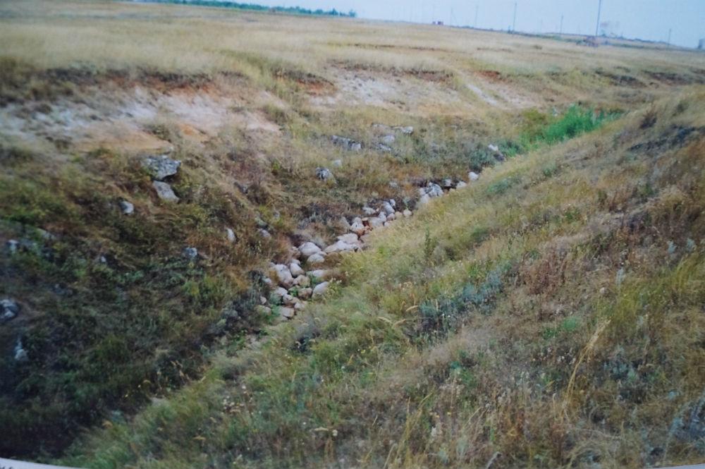Большой Каменный овраг (Волгоградская область)