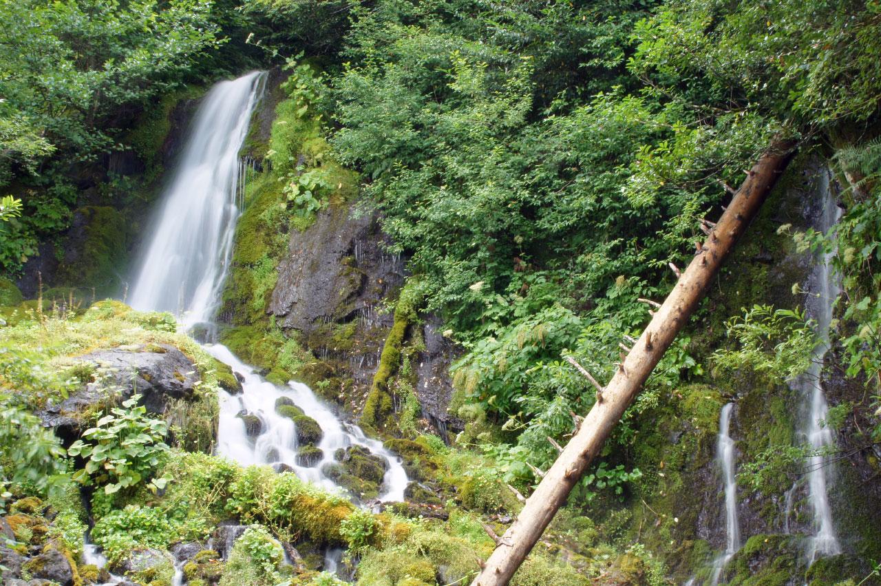 Водопад Птичий клюв (Рицинский нацпарк)