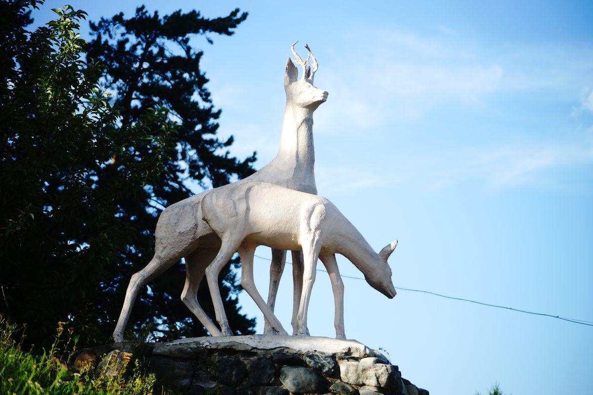 Скульптура оленей (Белокуриха)