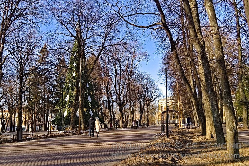 Центральный городской парк (Калуга)
