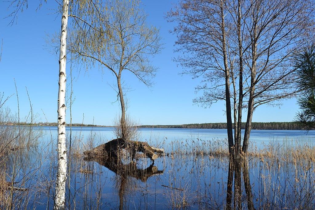 Святое озеро (Шатура)