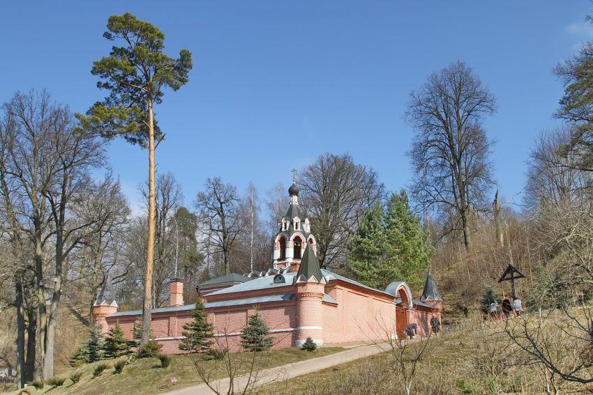 Саввинский скит (1862) (Звенигород)