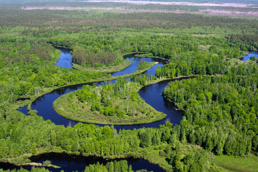 Окский природный биосферный заповедник (Рязанская область)