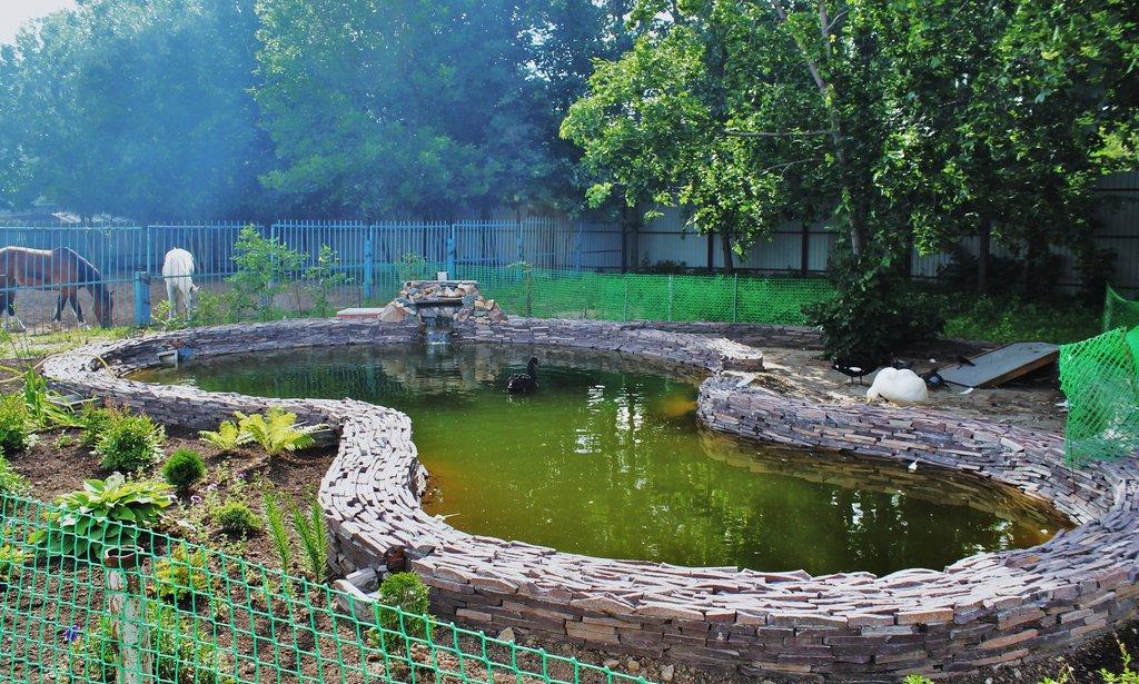 Ивановский зоопарк (Иваново)