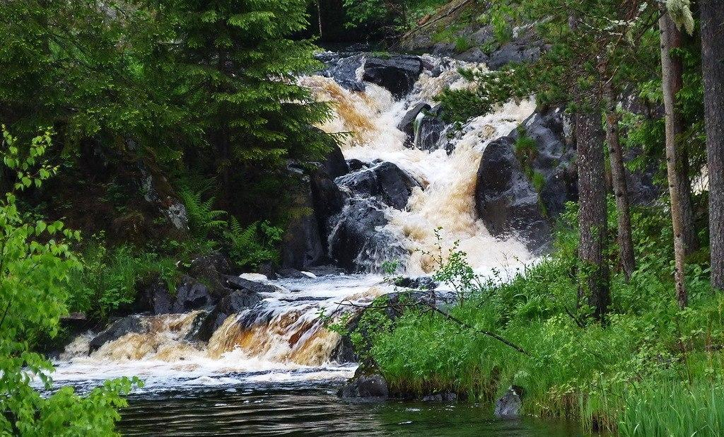 Национальный парк «Угра» (Калужская область)