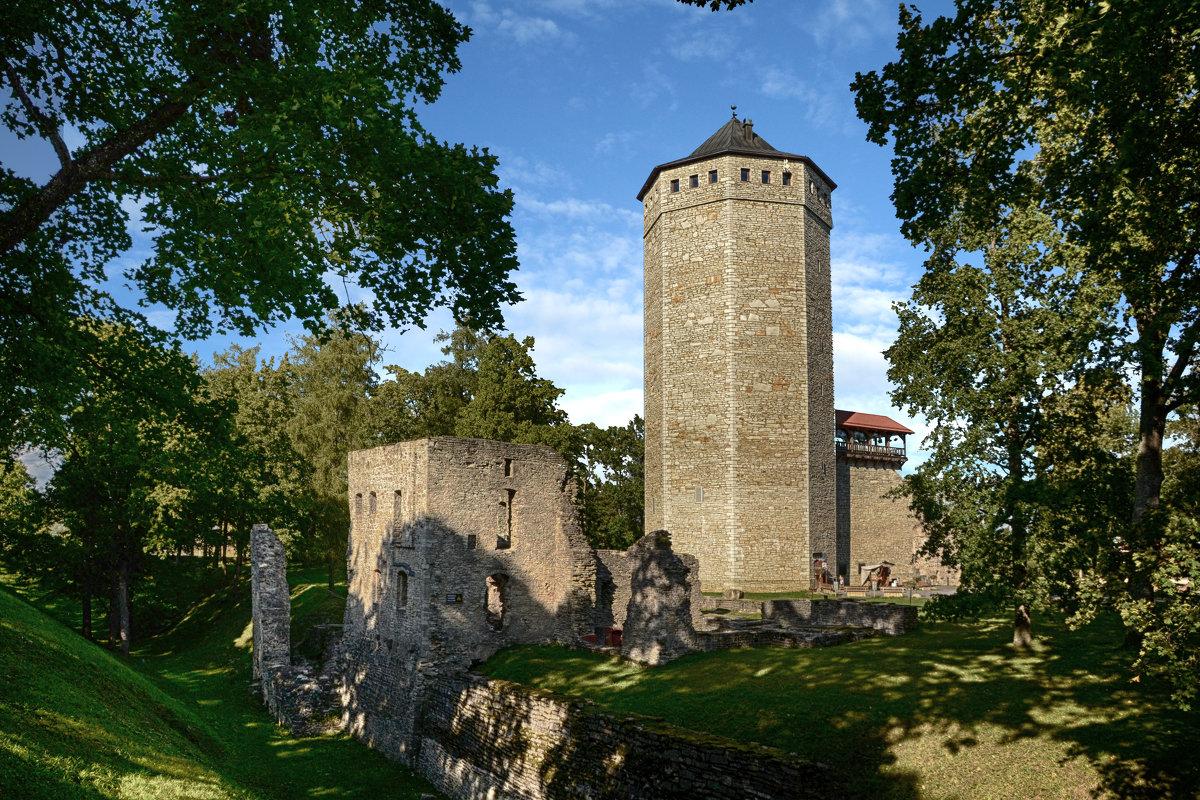 Развалины замка Пайде (Эстония)