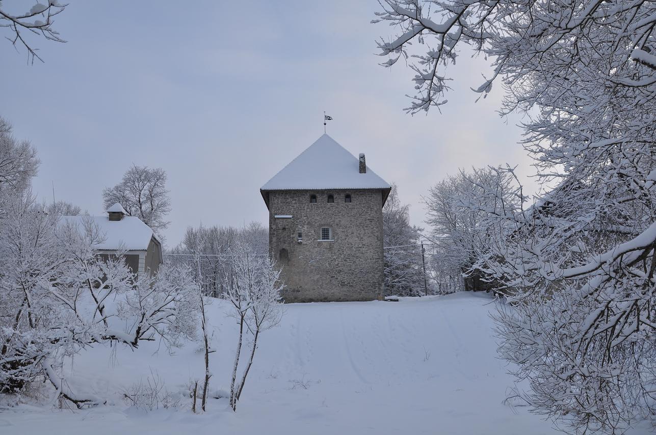 Вассальный замок Вак (Вао) (Эстония)
