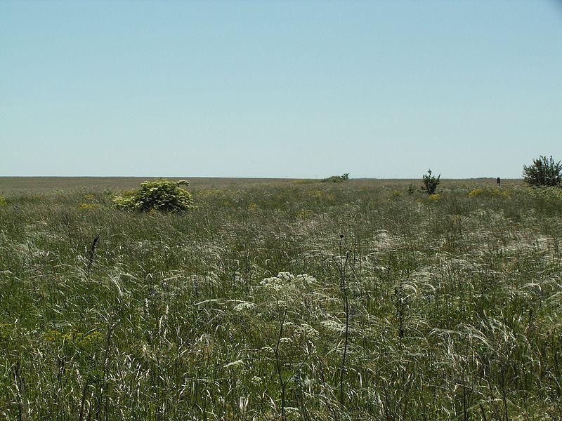 Центральночёрнозёмный государственный биосферный заповедник (Курская область)