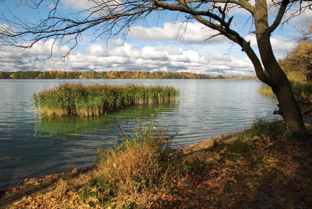 Бисеровские озера (Московская область)
