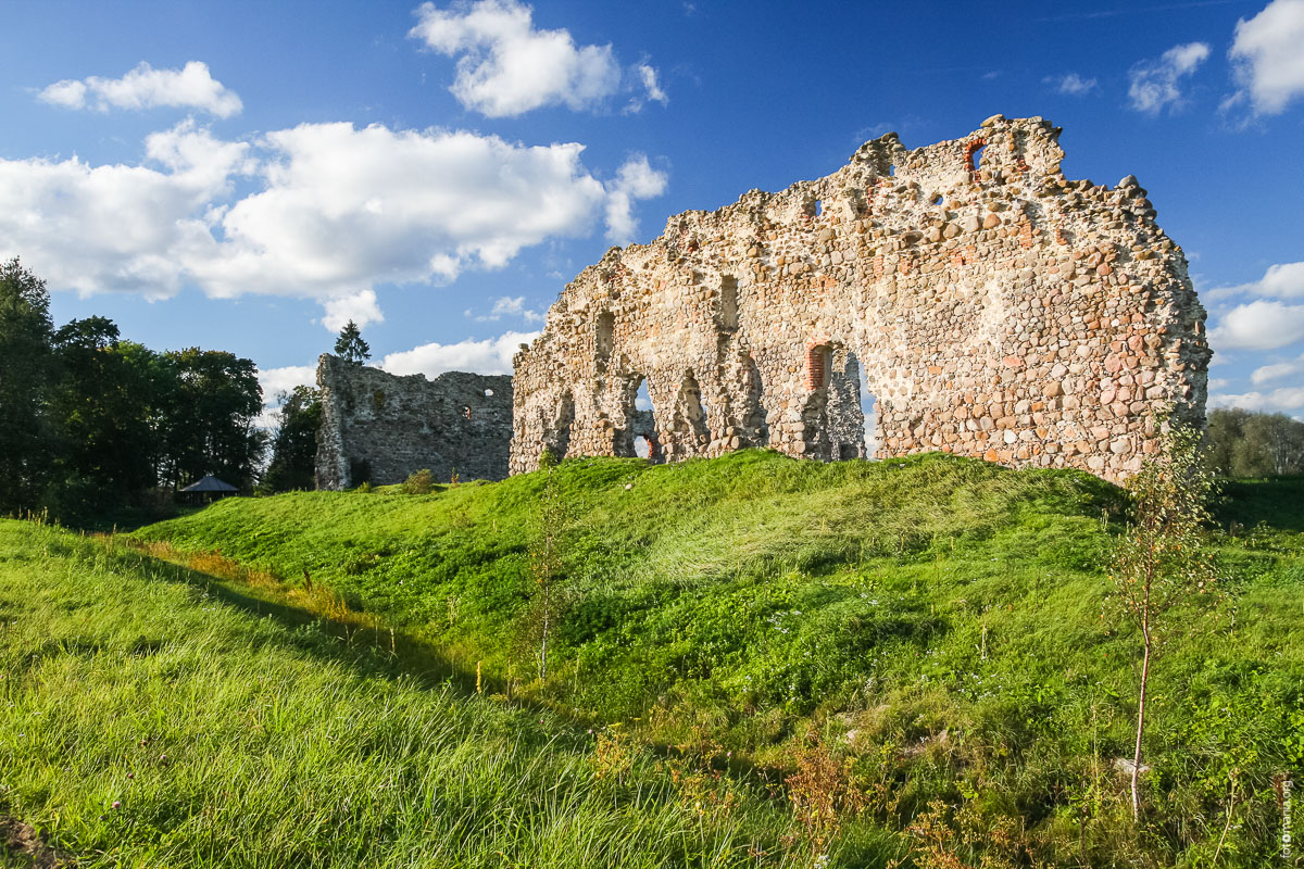 Замок Лайузе (Эстония)