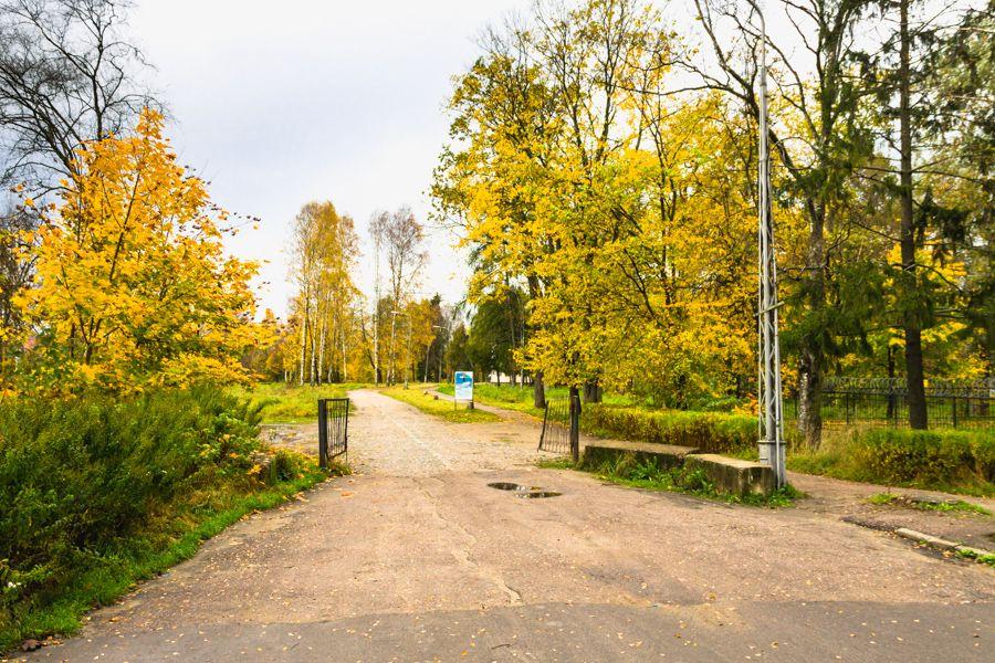 Городской парк (Олонец)